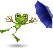 Groda med paraplyet Fotografering för Bildbyråer
