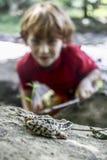 Groda och en pojke arkivfoto