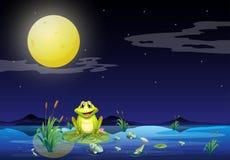 Groda och fiskar på sjön under den ljusa fullmoonen stock illustrationer