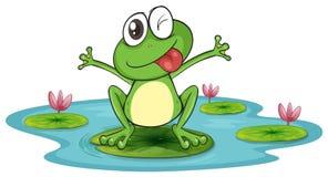 Groda och vatten stock illustrationer