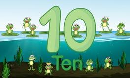 Groda tio på dammet vektor illustrationer