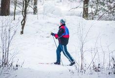 GRODNO, BIELORRUSIA - 15 DE ENERO DE 2017 Un viejo hombre ejercita para mejorar su salud por el esquí del campo a través Imagen de archivo libre de regalías