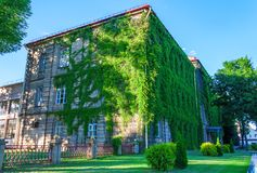 Grodno-staatliche Universität Stockfoto
