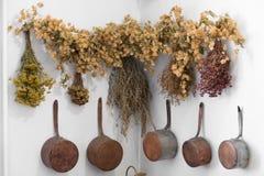 Grodno, Wit-Rusland - April 5, 2017: het helen van kruidenbossen in het apotheekmuseum van Grodno royalty-vrije stock foto