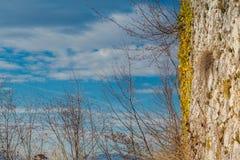 Grodowa ściana Zdjęcie Royalty Free
