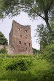 grodowa ruina Zdjęcie Stock