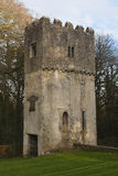 Grodowa wieża obserwacyjna Obraz Royalty Free