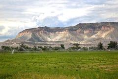 grodowej doliny ziemi uprawnej target821_0_ kropidło Utah Obraz Stock