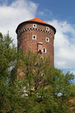grodowej historii Krakow Poland pamiątkowy wawel średniowieczny Obraz Royalty Free
