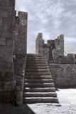 grodowi średniowieczni schodki Obraz Stock