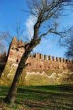 grodowy średniowieczny zdjęcia royalty free