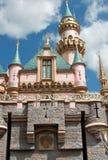 grodowy Disneyland Obraz Stock