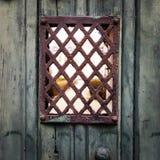 Grodowy drzwi Zdjęcia Royalty Free
