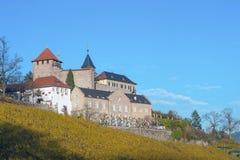 Grodowy Eberstein w Gernsbach Obertsrot Obraz Stock