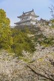 grodowy Himeji Japan Obraz Stock