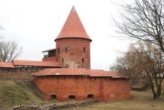 grodowy Kaunas zdjęcia stock