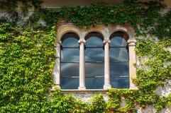 Grodowy okno w zielonej fasadzie obrazy royalty free