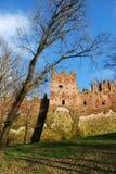 grodowy średniowieczny obrazy royalty free
