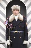 Grodowy strażnik przy jego sentry pudełkiem Zdjęcie Stock