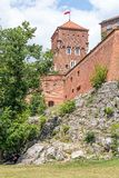 Grodowy Wawel w Krakow w słonecznym dniu Polska Zdjęcia Stock