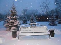 Grodzka dzika kaczka na białym śniegu obraz stock