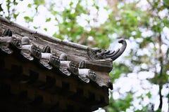 Grodzki God& x27; s świątynia, Zhengzhou Zdjęcia Royalty Free