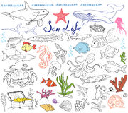 Große gezeichneter Skizzensatz der Seeleben-Tiere Hand Gekritzel von Fischen, Haifisch, Krake, Stern, Krabbe, Wal, Schildkröte, S Stockfotografie