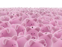 Große Gruppe piggy Querneigungen Lizenzfreies Stockbild
