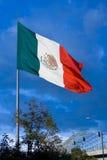Große mexikanische Markierungsfahne 1 Stockfotografie