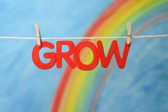 groei Royalty-vrije Stock Afbeelding
