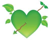 Groeiend hart Royalty-vrije Stock Afbeeldingen