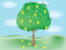 Groeiende citroenboom Royalty-vrije Stock Foto's