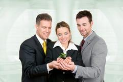 Groeiende groene zaken Stock Foto's