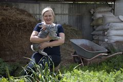 Groeiende konijnen op een landbouwbedrijf Royalty-vrije Stock Foto's