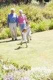 Großeltern, die mit Enkelkindern gehen Stockfotografie