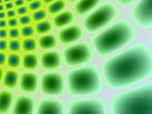 Groen stock illustratie