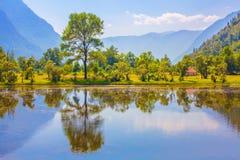 Groen aardlandschap met bergen Royalty-vrije Stock Afbeelding