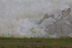 Groen bed bij sjofele muur Stock Foto's