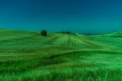 Groen, Bergen, Landbouwbedrijven en Gebieden op de rand van Ronda stock foto's