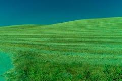 Groen, Bergen, Landbouwbedrijven en Gebieden op de rand van Ronda stock afbeelding
