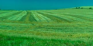 Groen, Bergen, Landbouwbedrijven en Gebieden op de rand van Ronda royalty-vrije stock afbeelding