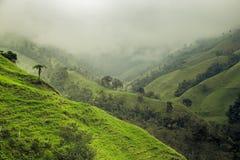 Groen bergenlandschap Royalty-vrije Stock Afbeeldingen