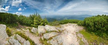 Groen bergenpanorama Stock Afbeelding