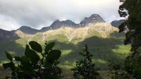 Groen bergenpanorama in gouden zonlicht van Nieuw Zeeland stock footage