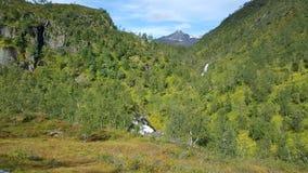 Groen bergketenlandschap Royalty-vrije Stock Foto's