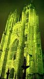Groen Beverley Minster royalty-vrije stock fotografie