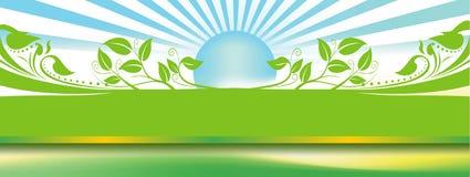 Groen blad en zonblauw Stock Foto