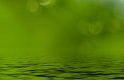 Groen blad, het bokeheffect, het ochtendzonlicht en de waterbezinning Royalty-vrije Stock Afbeeldingen