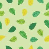 Groen bladeren Naadloos patroon Als achtergrond Royalty-vrije Stock Afbeelding
