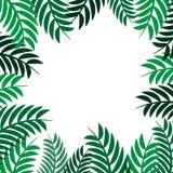 Groen bladerenkader op wit ontwerp achtergrond vector abstract aard als achtergrond royalty-vrije illustratie